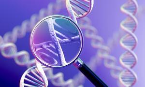 Przemeblowanie w genomie